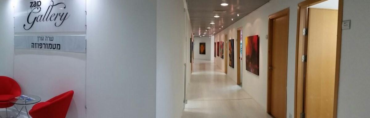 גלריית ציורים במשרדי חב' ZAP